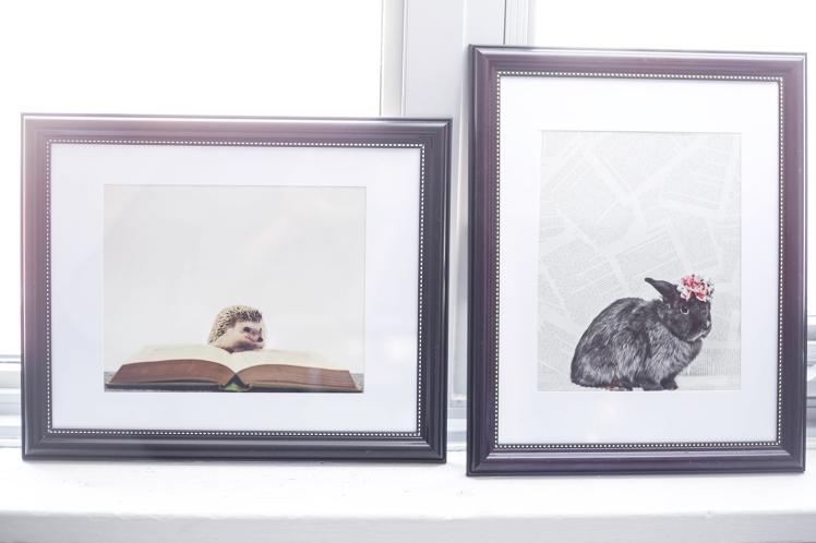 toronto-branding-photographer-gooseberry-studios-13